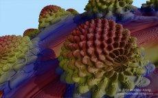 3D-Erdbeerfraktal